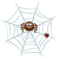 Aranha na web vetor