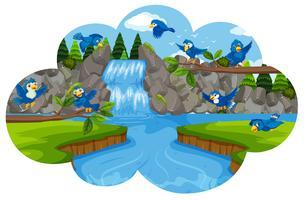 Pássaro na cachoeira vetor