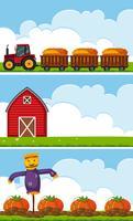Três cenas de fazenda com trator e abóboras vetor