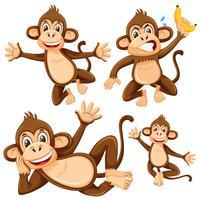 Conjunto de personagem de macaco vetor