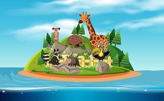 Uma ilha e animais exóticos vetor