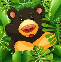 Urso pardo no mato vetor