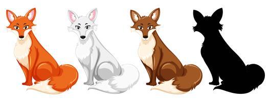 Conjunto de raposa diferente vetor