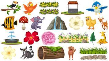 Conjunto de animais e plantas vetor