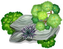 Uma rocha natural para o elemento vetor