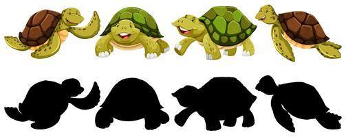 Conjunto de personagem de tartaruga vetor