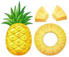 Um abacaxi no fundo branco vetor