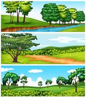 Cenas da natureza com árvores e rio vetor