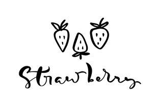 Mão desenhada texto de caligrafia Morango e três ícones de contorno doodle de morango. Ilustração do logotipo do esboço do vetor da baga saudável - morango cru fresco para impressão, web, mobile e infográficos isolado