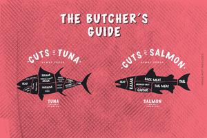 O guia do açougueiro, corte de peixe vetor