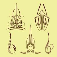 conjunto de coleta de estilo pinstriping américa