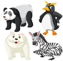Conjunto de animais isoalted vetor