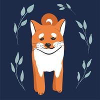 Bonito colorido feliz shiba inu cachorro sorrindo isolado na vista lateral de fundo branco