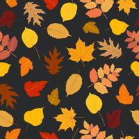 Folhas de outono sem costura padrão colorido fundo vetor