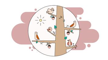 O vetor de pássaros