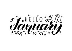Olá janeiro mão desenhada rotulação cartão com doodle snowlakes e pássaro. Inspiradora citação de inverno. Impressão motivacional para convite ou cartões, folhetos, cartaz, t-shirts, canecas.