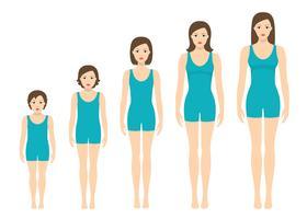 Proporções do corpo das mulheres mudando com a idade. Estágios de crescimento do corpo da menina. vetor