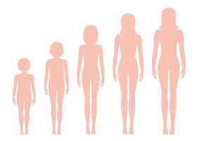 Proporções do corpo das mulheres mudando com a idade. Estágios de crescimento do corpo da menina. Ilustração vetorial Conceito de envelhecimento. Ilustração com a idade da menina diferente do bebê ao adulto.