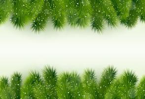Saudação de Natal com árvore de abeto vetor