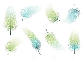Conjunto de vetores de penas verdes azuis