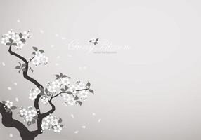 Vetor de fundo branco flor de cerejeira