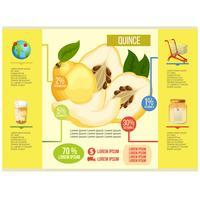 vetor de infográfico de marmelo