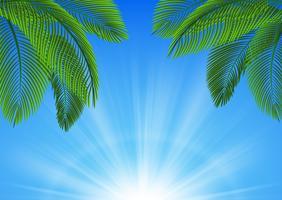 Fundo de folhas tropicais. Apropriado para o conceito de natureza, férias e férias de verão. Ilustração vetorial