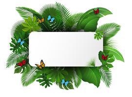 Assine com espaço do texto das folhas e das borboletas tropicais. Apropriado para o conceito de natureza, férias e férias de verão. Ilustração vetorial