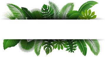 Cadastre-se com espaço de texto de folhas tropicais. Apropriado para o conceito de natureza, férias e férias de verão. Ilustração vetorial vetor