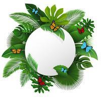 Sinal redondo com espaço do texto das folhas e das borboletas tropicais. Apropriado para o conceito de natureza, férias e férias de verão. Ilustração vetorial vetor