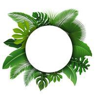 Sinal redondo com espaço de texto de folhas tropicais. Apropriado para o conceito de natureza, férias e férias de verão. Ilustração vetorial vetor