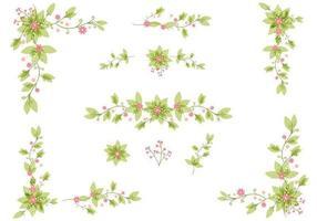 Conjunto elegante de vetores de folhas florais