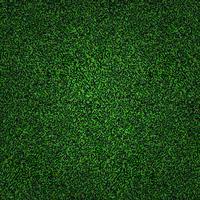 Fundo de grama verde vetor