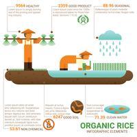 Arroz orgânico de comida saudável vetor