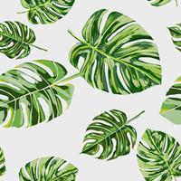 Padrão sem emenda de folha tropical desenhada de mão vetor