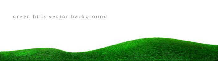 Vetor de colinas verdes de fundo