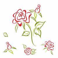 Rosa. flor. elementos. conjunto. Para a decoração de cartões. Esboço linear. Vetor. vetor