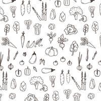 Conjunto De Rabiscos De Legumes Desenhados Mão. vetor
