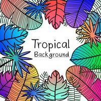 Fundo tropical tirado mão das folhas.
