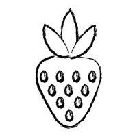 figura deliciosa morango frutas orgânicas vetor