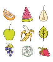 Jogo, de, frutas, cobrança vetor