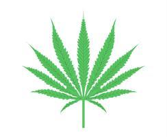 Vetor de folha de cannabis realista