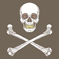 Sinal de pirata marrom vetor