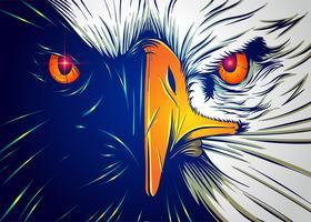 Cara poderosa da águia vetor