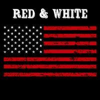 Bandeira americana afligida vetor