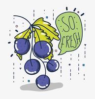Uvas tão frescas vetor