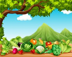 Frutas e legumes na mesa vetor
