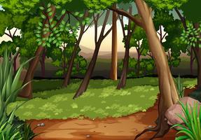 Cena com árvores e campo na floresta vetor