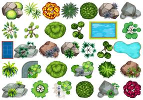 Conjunto de plantas para decoração vetor