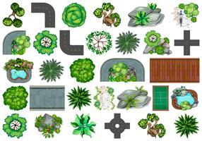 Conjunto de plantas para decoração